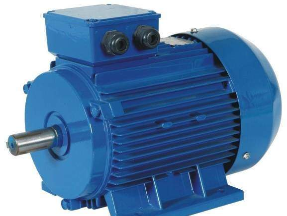 Sensory and sensorless speed estimation of induction motor, advantages, disadvantages and cost estimates